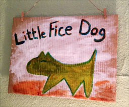 little-fice-dog
